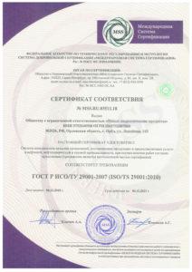 ИСО/ТУ 29001-2007